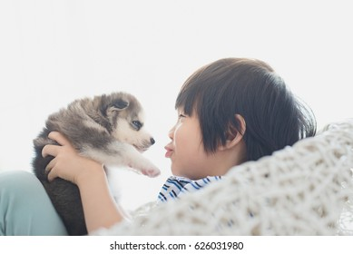 Cute asian child playing with siberian husky puppy on white basket chair