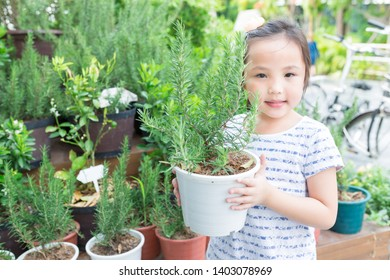 cute asian children holding rosemary plant with her hands, rosemary plant in white plastic pot, she feeling happy and smile in relax time