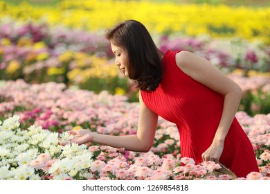 Cute Asian woman in red dress standing in flower garden with many kinds and colorful flowers, beautiful lady take care and check quality of flowers.