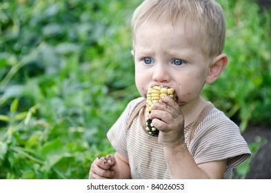 Cute Baby Boy eating a dirty ear of corn in a garden