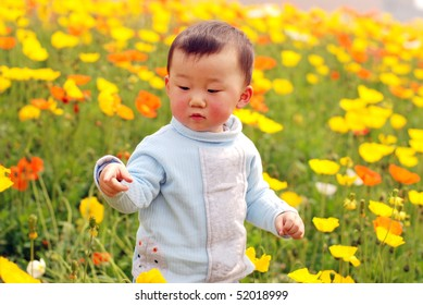 cute baby boy in flower field