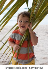 Cute baby boy with palm leaves