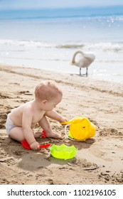 Cute baby boy playing with beach toys on the sand in summer vacation. Travel and adventure concept. Family travel.