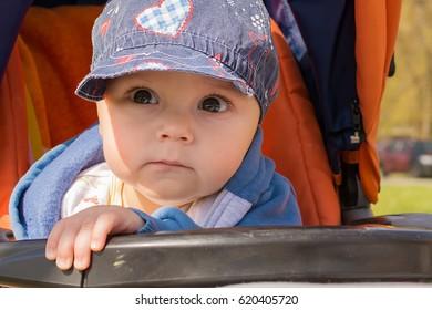 Cute baby boy in a stroller