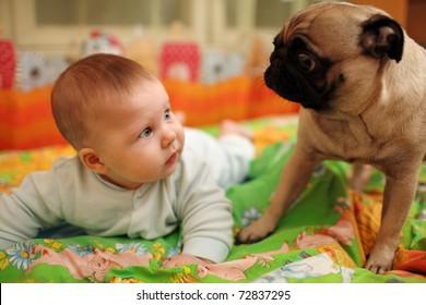 Cute baby girl looking at pug dog. Closeup, shallow DOF.