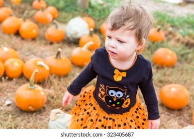 Cute baby girl picking her pumpkin for Halloween.