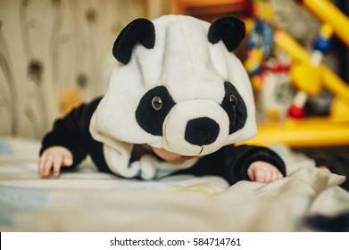 panda suit images stock photos vectors shutterstock