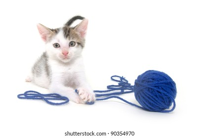 Cute baby kitten playing with ball of yarn on white background