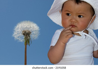 cute baby looking at dandelion
