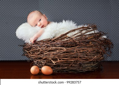 cute baby lying in the nest