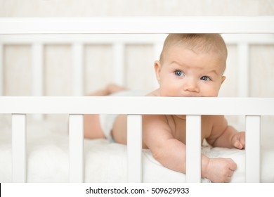 Cute baby on a tummy in a white cot looking across the room through the wooden frame, itching gums, sucking the wooden board of the cot, teething proccess. Family, baby development concept photo