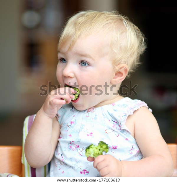 Cute baby or toddler girl sitting in a high feeding chair biting on delicious freshly cooked broccoli