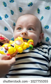 Cute baby with a toy in his mouth