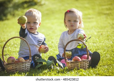Cute baby twins boy and girl with apples on sunny meadow
