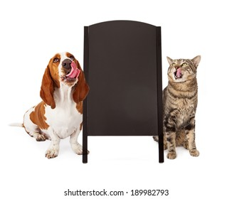 A cute Basset Hound dog and a tabby cat  both licking their lips and looking up at a blank chalk board sidewalk sign that is ready for you to enter your marketing message on