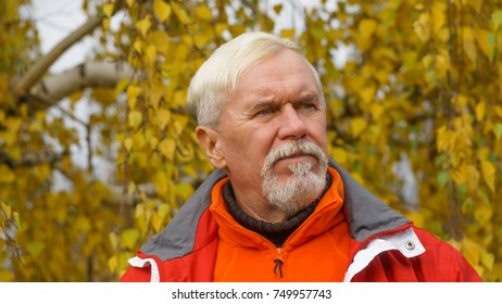 Cute bearded elderly man with gray hair on a background of autumn trees with yellow leaves