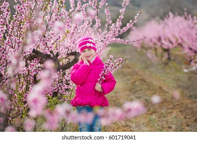Cute beautiful stylish dressed brunette girl standing on a field of spring young peach tree with pink flowers.Smiling lady dressed in rain clothes and blue hat rubber boots spring season.