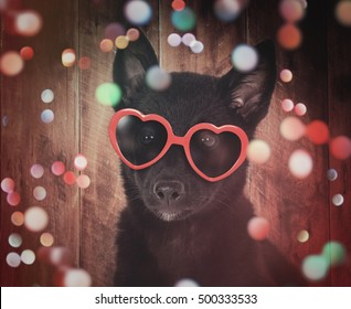 A cute black dog with red heart sunglasses is on a wood background with colorful sparkles around the pet for a party or celebration concept.