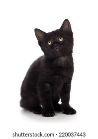 Cute black kitten with green eyes isolated on white.
