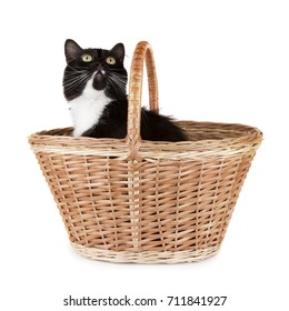 cute black and white fluffy cat sitting in a wicker basket and looking up
