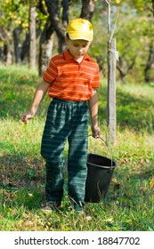 Cute boy with a bucket going to pick up apples in a garden