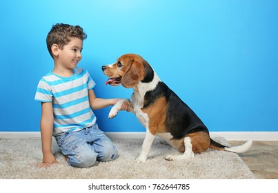 Cute boy with dog near color wall