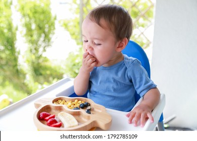 Cute boy eating fruit by himself on high chair baby led weaning or blw. Mixed race Asian-German infant self-feeding solid food fine motor development.