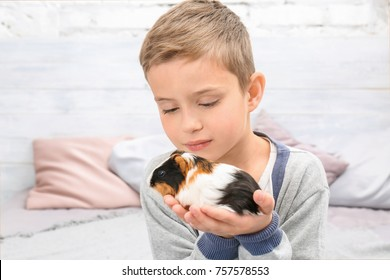 Cute boy with funny guinea pig, indoors