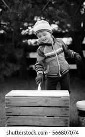 Cute boy paints a wooden box