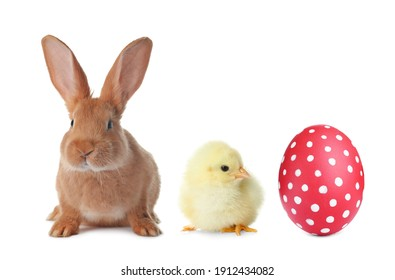 Cute bunny, baby chick and bright Easter egg on white background