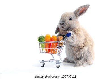 Cute bunny shopping for his favorite snacks with shopping cart, isolated on white