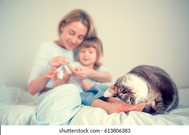 Cute cat is fawning and rubbing her head by girl's legs while a mother is painting nails to her daughter. Image with selective focus and toning