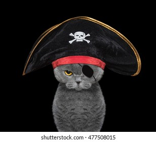 cute cat in a pirate costume -- isolated on black