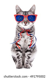 Cute cat with sunglasses and bow on white background. USA holiday concept.