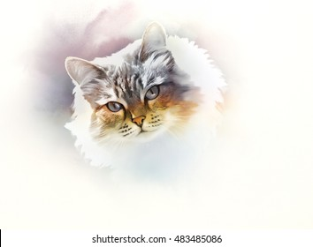 Cute cat. Watercolor portrait of a cat. Drawing of a cat with blue eyes executed in watercolor.