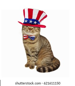 The cute cat is wearing a American patriotic hat and bow tie. White background.