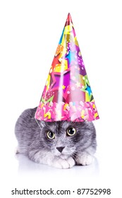 cute cat wearing a party hat  on a white background