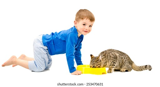 Cute cheerful boy and the cat who eats isolated on white background
