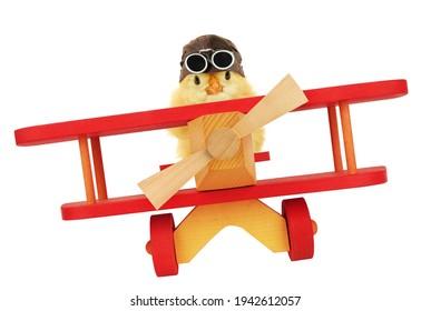 Cute chick aviator fliegt mit einem lustigen, konzeptionellen Foto einzeln auf weißem Hintergrund