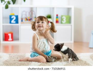 Cute child girl feeding his pet dog