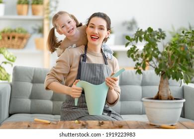 Kleines Mädchen, das ihrer Mutter hilft, sich um Pflanzen zu kümmern. Mama und ihre Tochter machen sich zu Hause auf Gartenarbeit. Fröhliche Familie am Frühlingstag.