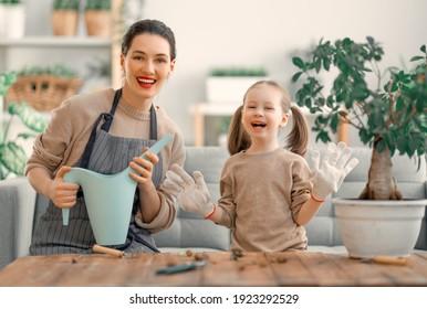 Niña linda ayudando a su madre a cuidar de las plantas. Mamá y su hija se dedican a la jardinería en casa. Feliz familia en primavera.