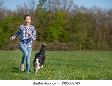 Cute child - happy teen girl playing with young Australian Shepherd dog, outdoors. Girl run with happy dog on spring field. Beautiful Aussie enjoy on meadow with green grass and flowers.