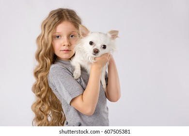 Cute child, little girl blonde with beautiful hair holding white chihuahua dog isolated on white background. Kids pet friendship. Space for Your Text.