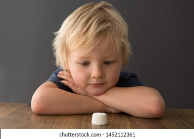 Cute child looks at single marshmallow on table. The marshmallow test/marshmallow experiment.