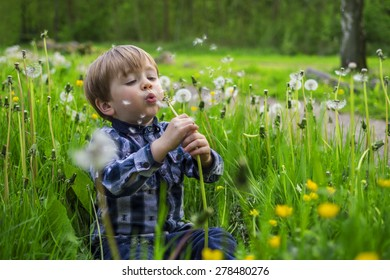 Cute child playing in a field with dandelions