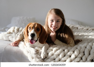 Cute child resting with beagle dog on the sofa. Beagle and girl looking at the camera together. Funny dog and pretty caucasian have fun girl in bedroom