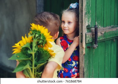 Cute children, a boy gives a girl flowers sunflower . The concept of childhood . Valentine's Day .
