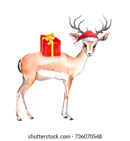 Cute christmas deer animal in red santa's hat. Watercolor