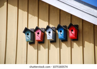 Cute colorful bumblebee shelters on a house wall
